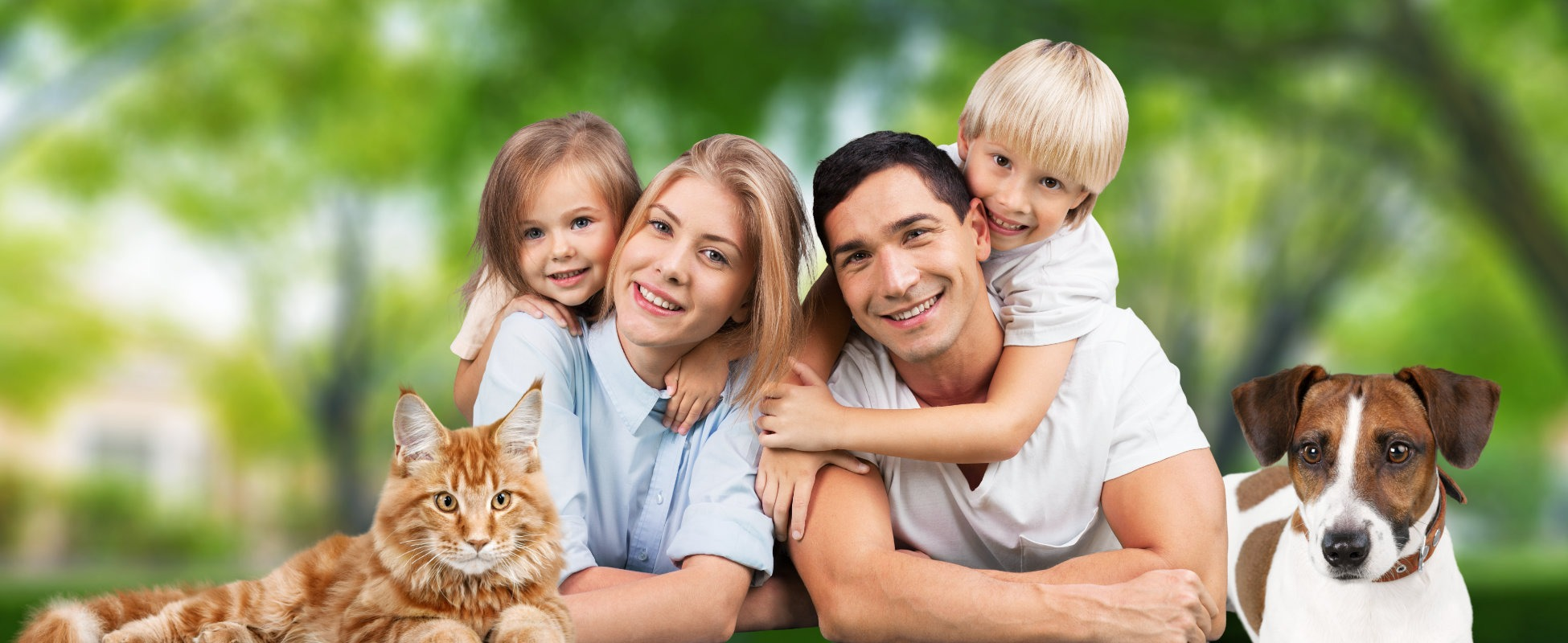bionutrition family dog and cat